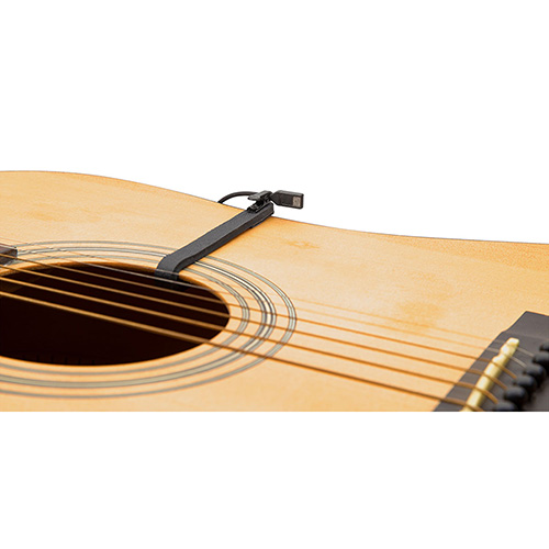 Countryman I2 Guitar Mount