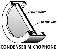 Diagram of diaphragm and backplate of a Condenser Microphone