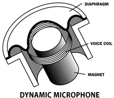 Diagram of voice coil and magnet of Dynamic Microphone